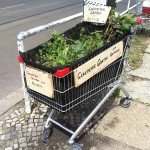 Jardin mobile dans le quartier de Neuköln, à Berlin. Crédits : Stan Wiechers / Flickr