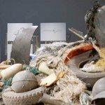 Marseille va accueillir cette exposition itinérante © Museum for Science, Hong Kong