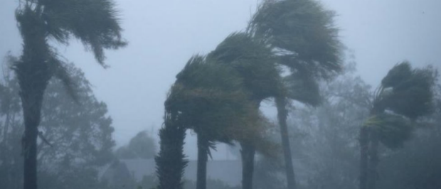 Début octobre 2018, la Floride a été frappé par l'ouragan Michael, avec des vents soufflant jusqu'à 250 km par heure