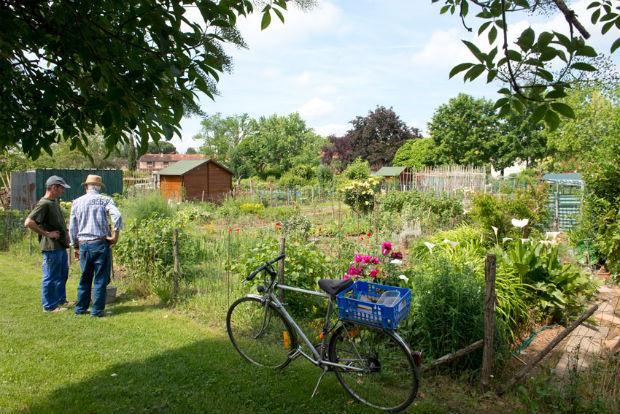 À Albi, les jardins familiaux permettent l'autonomie et l'autoproduction