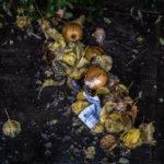 photographie de dechets alimentaires