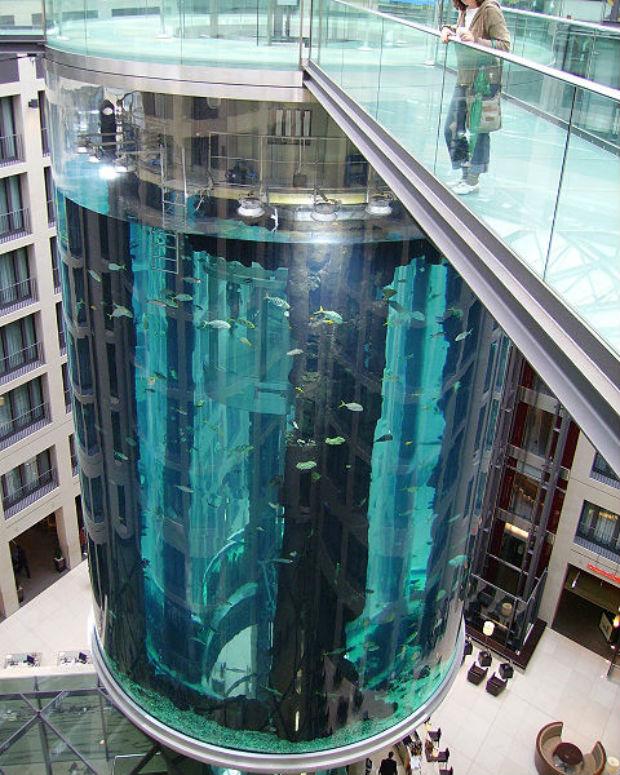 L'ascenseur est intégré au plus grand aquarium du monde