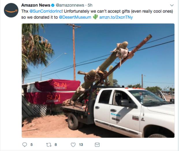 Amazon offre le saguaro au Musée du désert Sonora dans l'Arizona