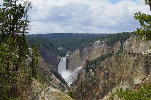 Yellowstone, premier parc national du monde.