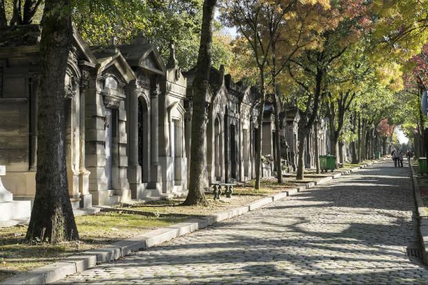 Une des allées arborées du cimetière du Père Lachaise, lieu de promenades pour beaucoup de parisiens et visiteurs ©️Emile Lombard sur Flickr